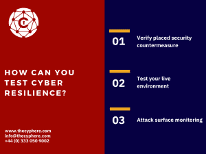 how can you test cyber resilience